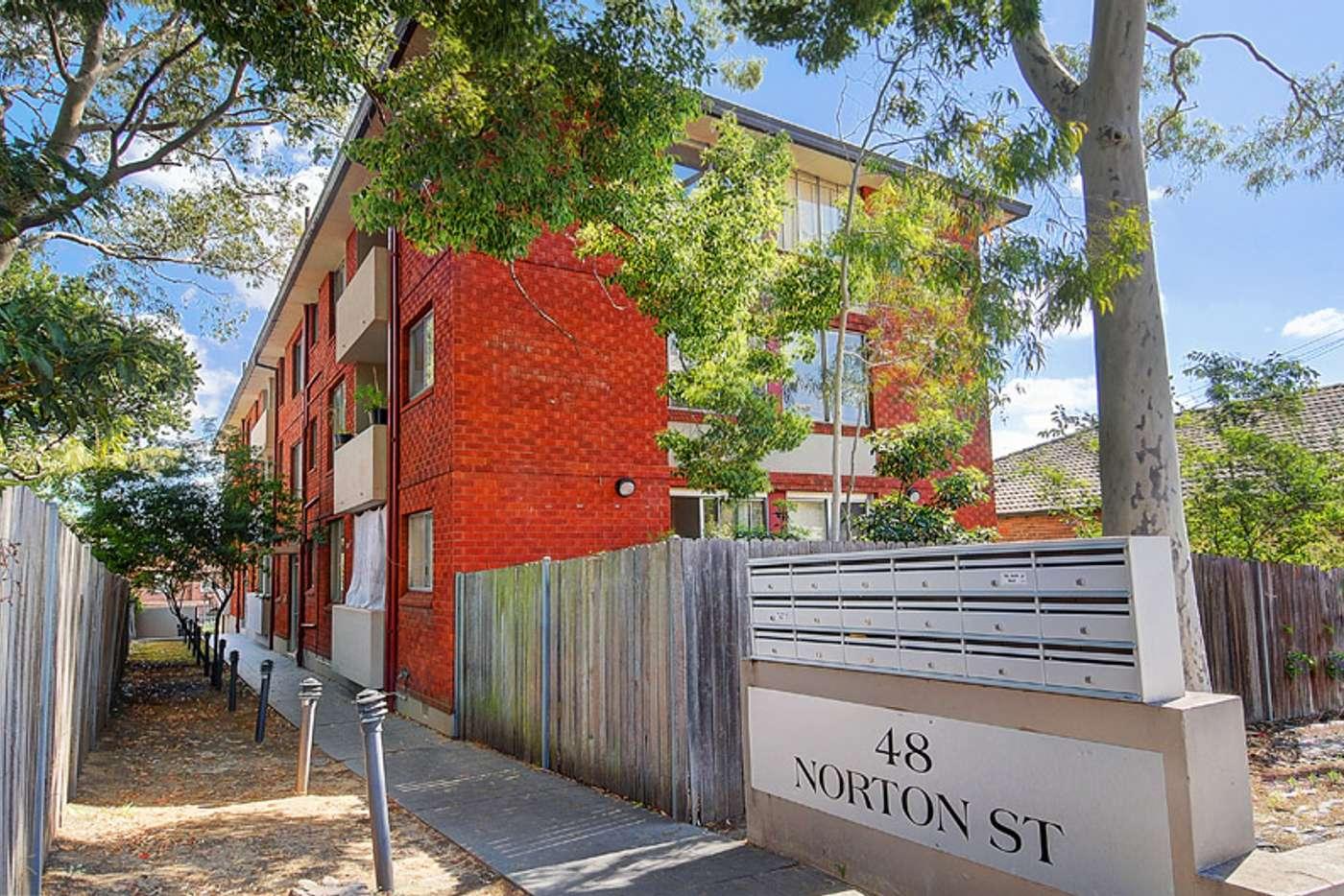 Main view of Homely studio listing, 10/48 Norton Street, Ashfield NSW 2131
