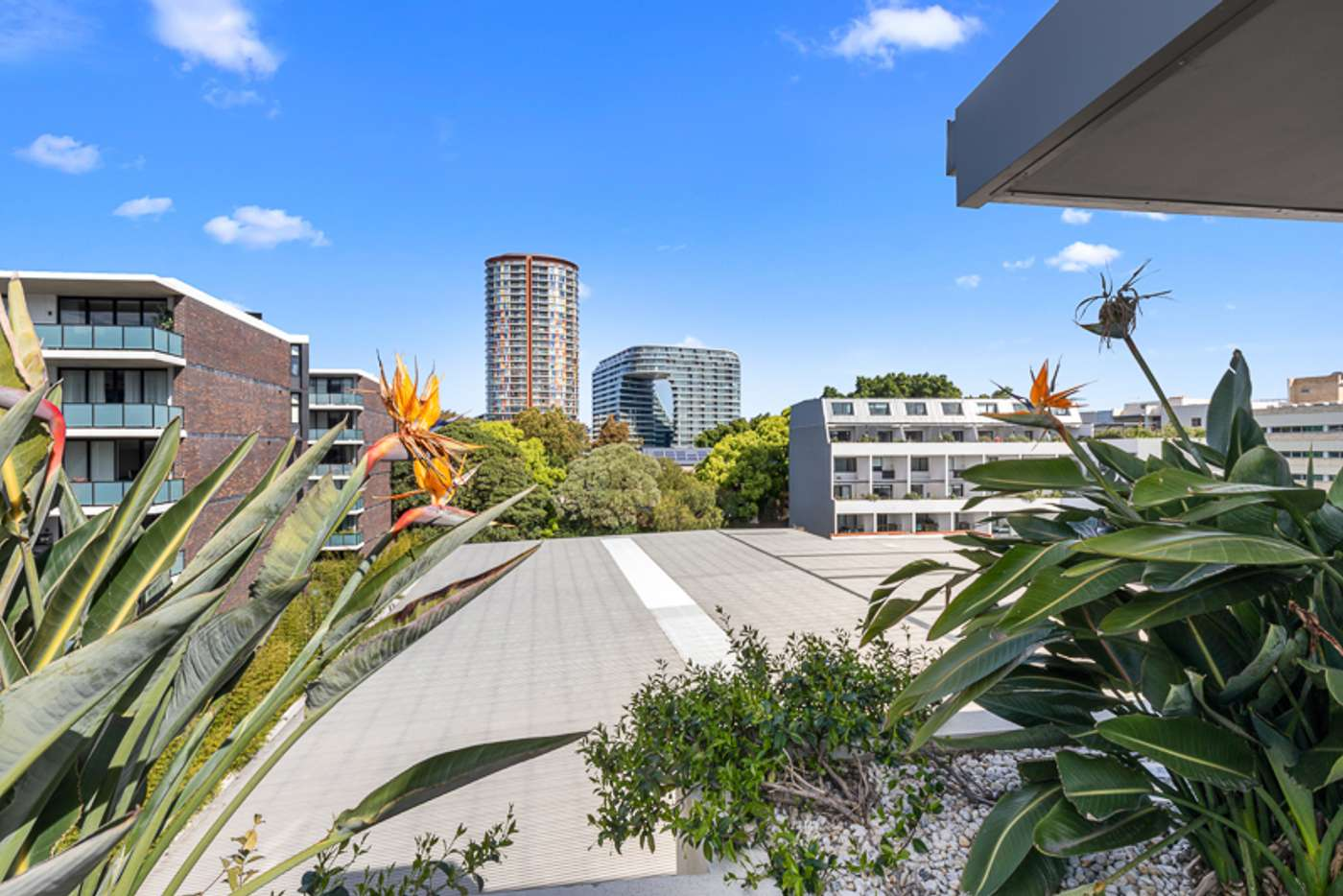 Fifth view of Homely apartment listing, 23/8 Allen Street, Waterloo NSW 2017