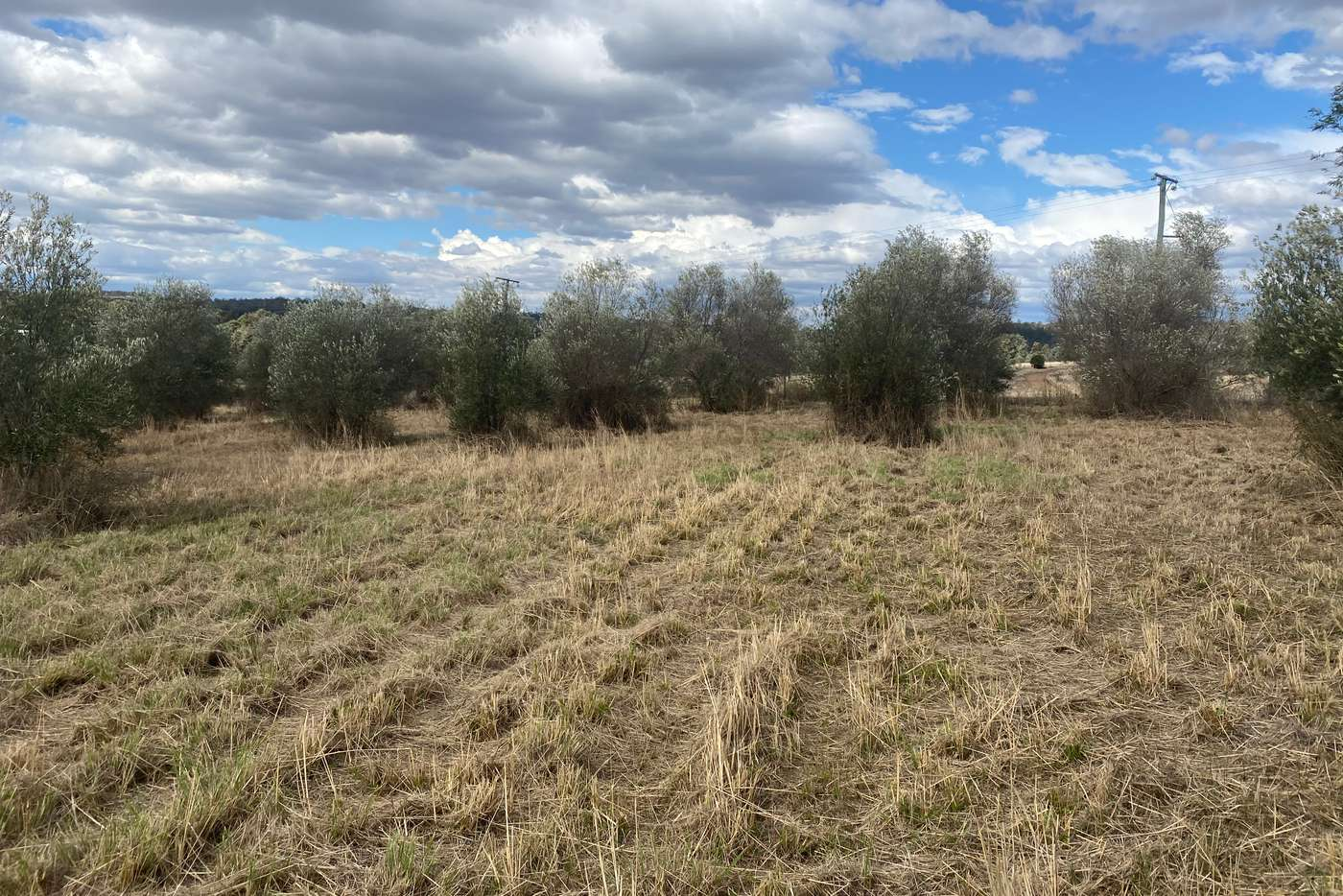 Main view of Homely residentialLand listing, Lot 81 Butler Drive, Proston QLD 4613