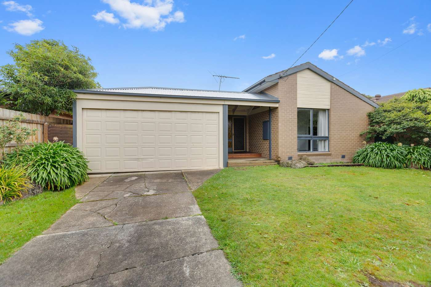 Main view of Homely house listing, 20 Olstead Drive, Baxter VIC 3911