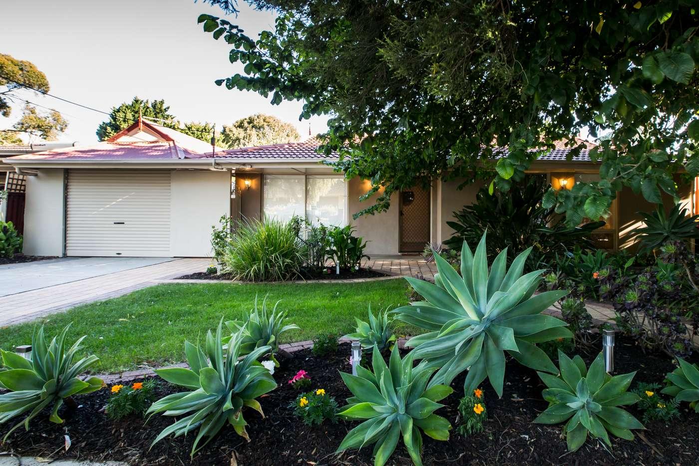 Main view of Homely house listing, 8 Riordan Street, Morphett Vale SA 5162