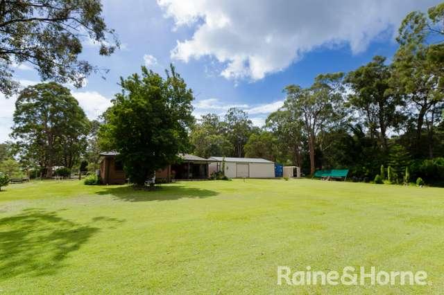 38 Kirrang Drive, Medowie NSW 2318