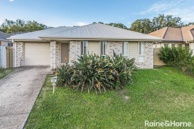 31 Montree Crct, Kallangur QLD 4503