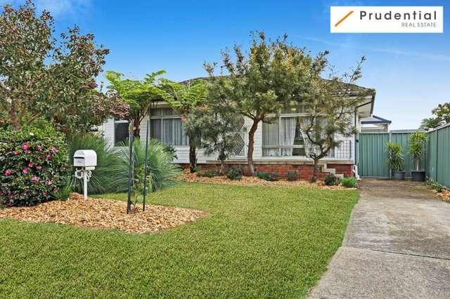 46 Darwin Road, Campbelltown NSW 2560