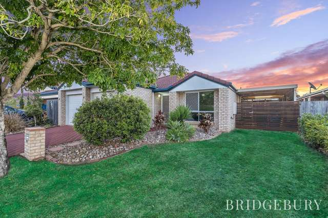 84 Pine River Drive, Murrumba Downs QLD 4503