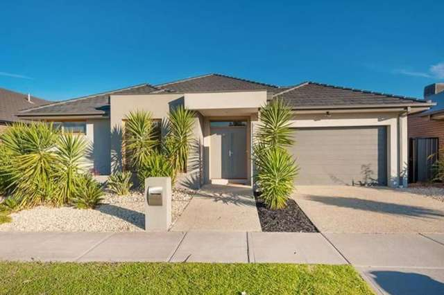 48 Middlesborough Drive, Craigieburn VIC 3064