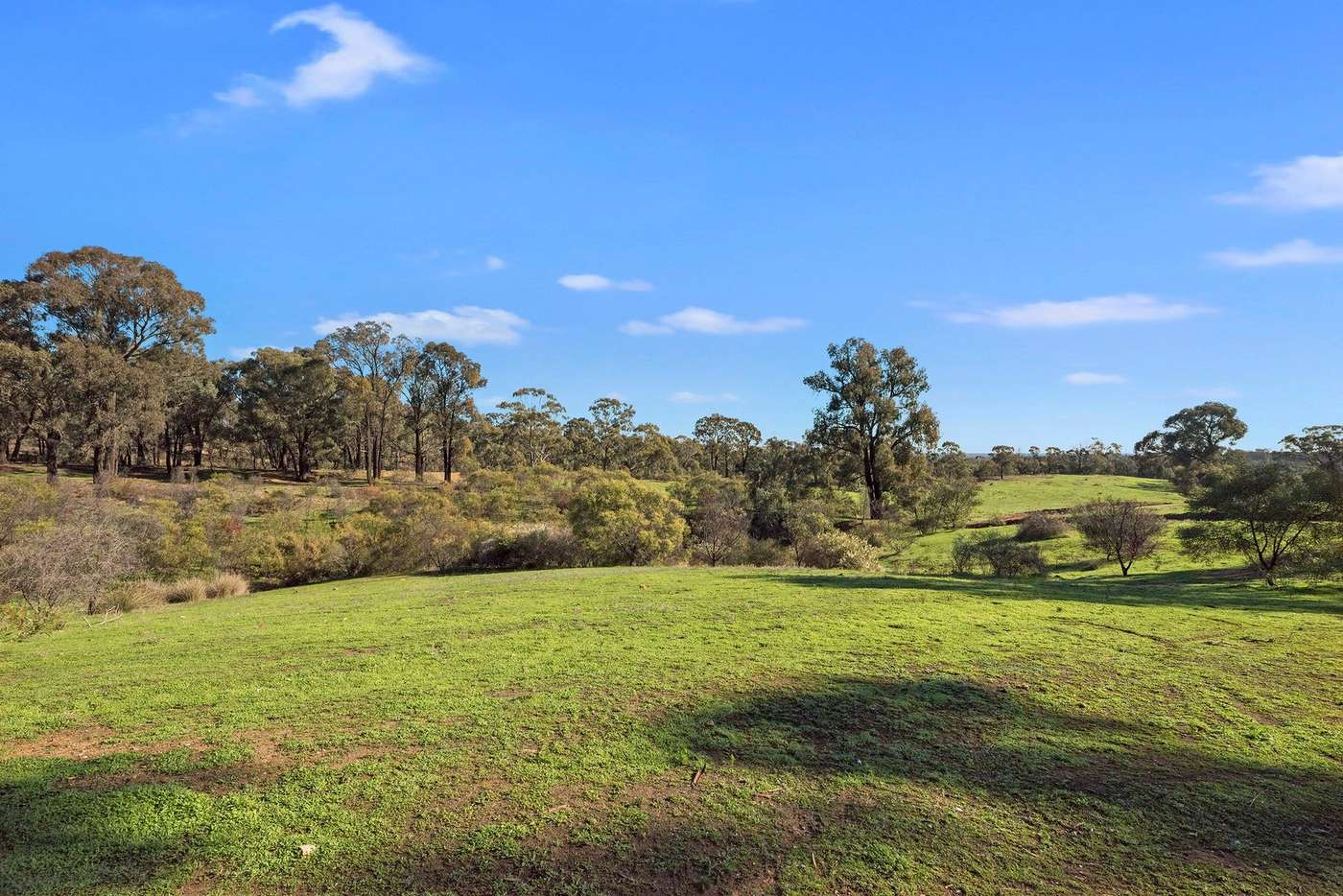 Sixth view of Homely residentialLand listing, 103 Albert Street, Maiden Gully VIC 3551