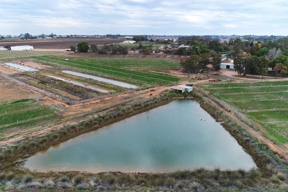 Fourth view of Homely horticulture listing, 9214 Calder Highway, Irymple VIC 3498