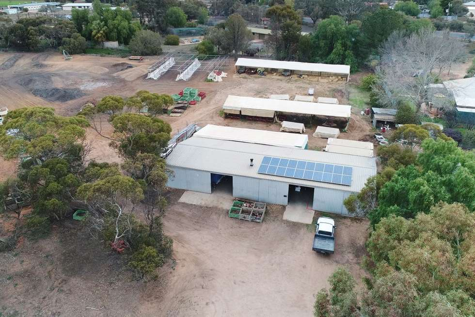 Fifth view of Homely horticulture listing, 9214 Calder Highway, Irymple VIC 3498