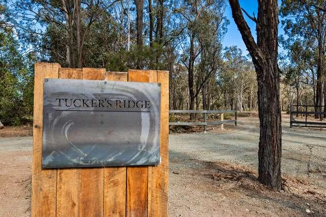 390 Tuckers Lane, Greta NSW 2334