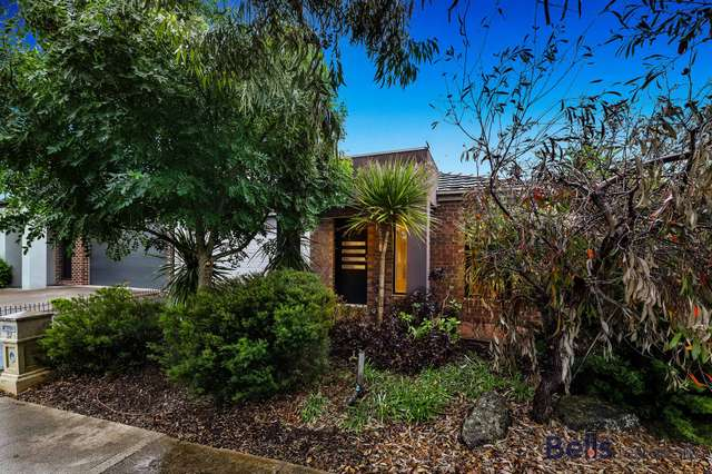 37 Surrey Grove, Point Cook VIC 3030