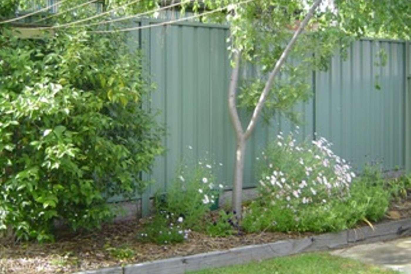 Seventh view of Homely house listing, 61 Gladstone Street, Bendigo VIC 3550