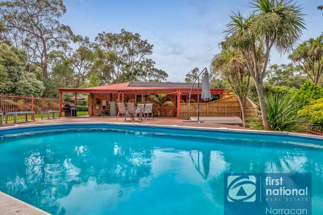 325 Becks Bridge Road, Tanjil South VIC 3825