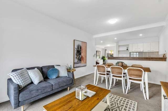 7/177 Angas Street, Adelaide SA 5000