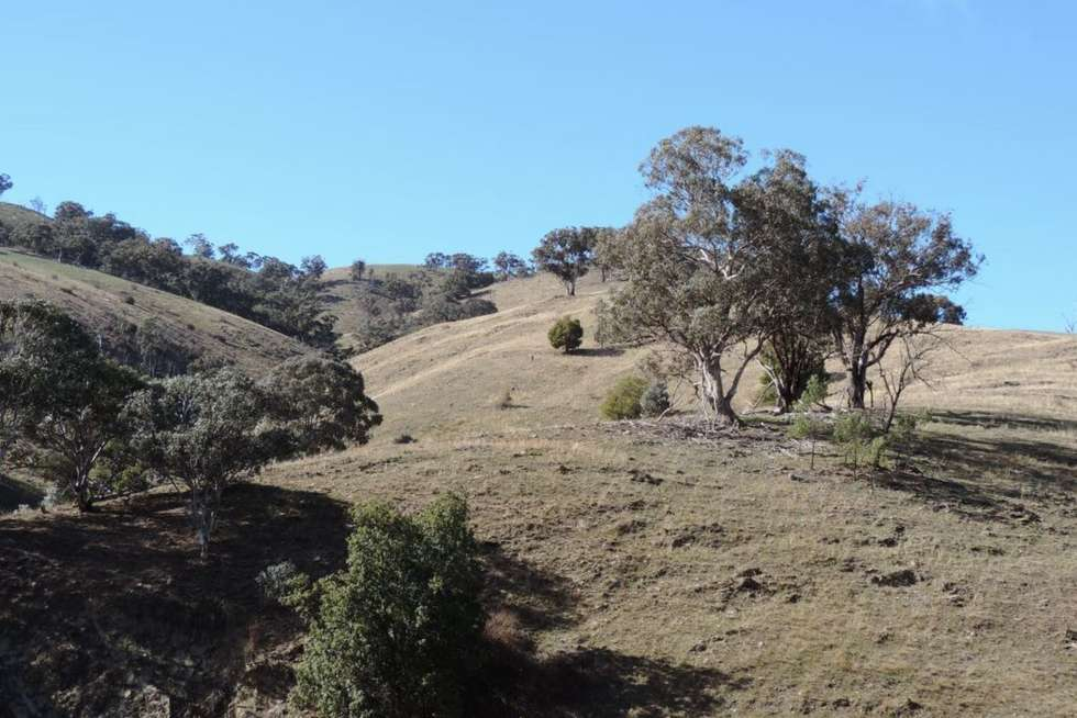 Lot 101 Hollow Mount Road