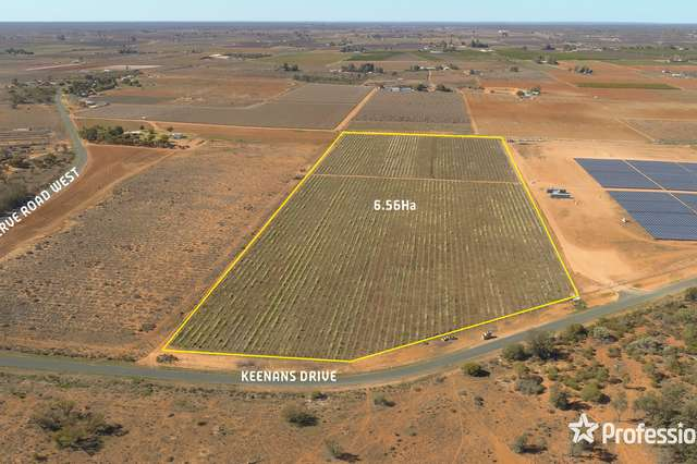 Lot 157 Keenans Drive, Coomealla NSW 2717