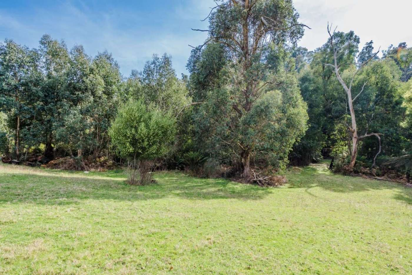 Seventh view of Homely residentialLand listing, 77 Falls Road, Marysville VIC 3779