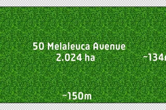 50 Melaleuca Avenue, Junortoun VIC 3551