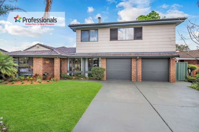 15 Newmoon Place, St Clair NSW 2759