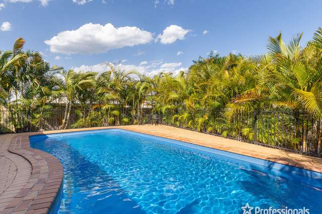 11 Hughes Court, Morayfield QLD 4506