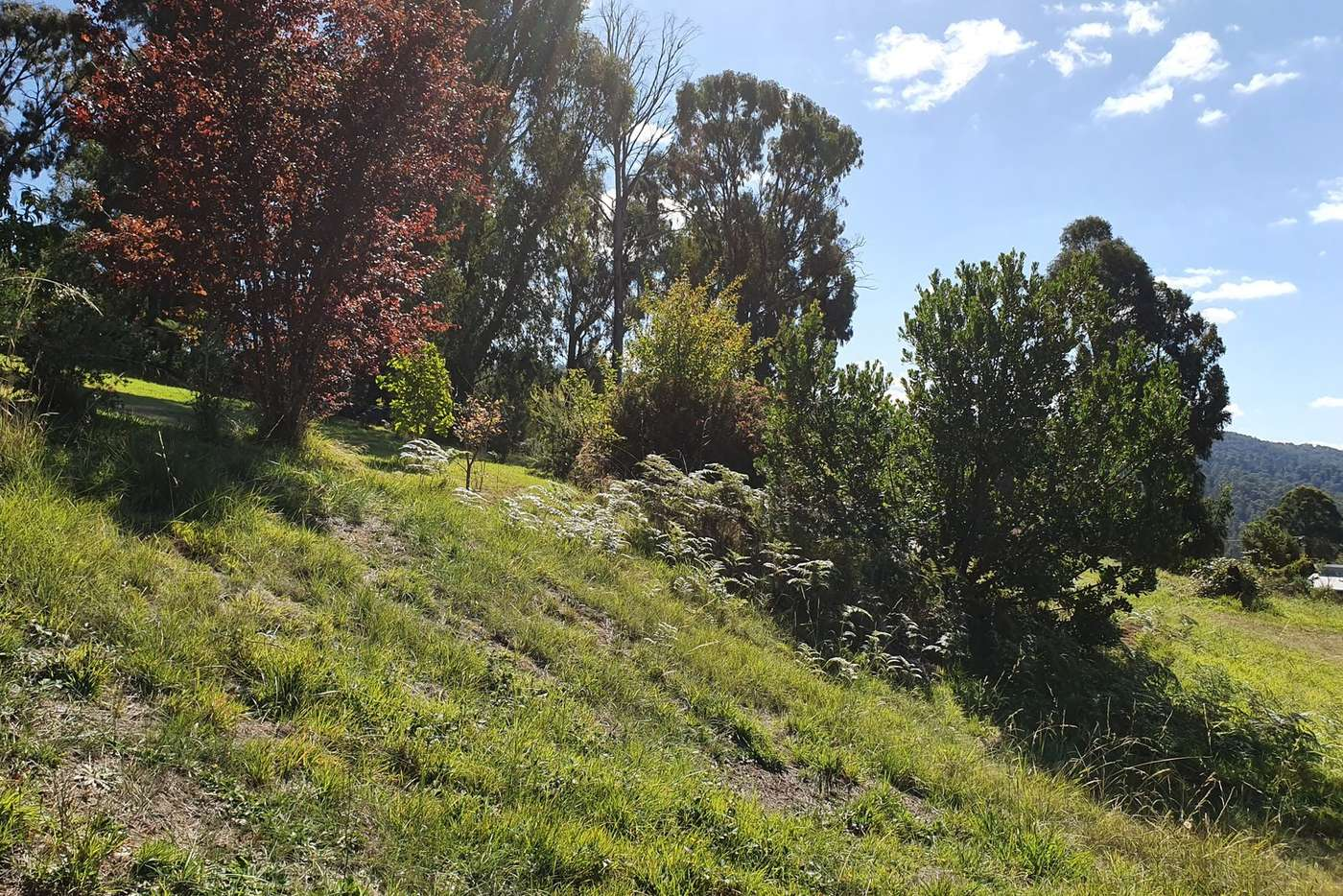 Seventh view of Homely residentialLand listing, 9 Kings Road, Marysville VIC 3779