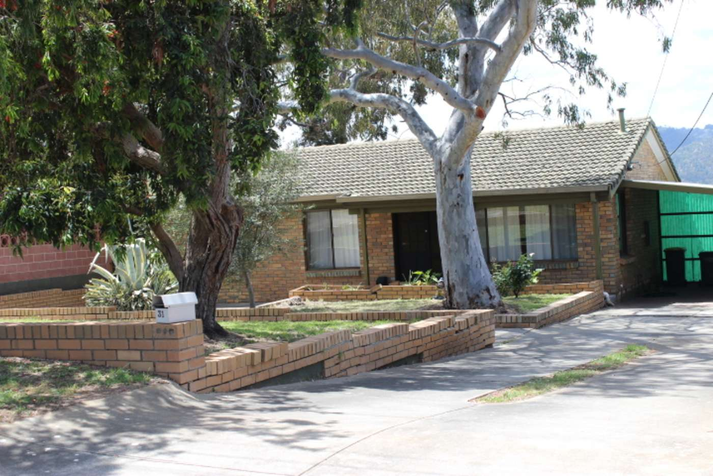 Main view of Homely house listing, 31 Packers Drive, Highbury SA 5089